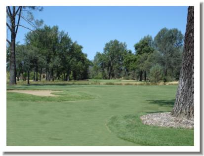 gold-hills-golf-course-1ff