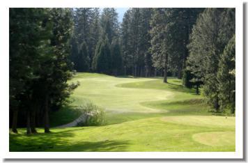 mount-shasta-resort-golf-course-7
