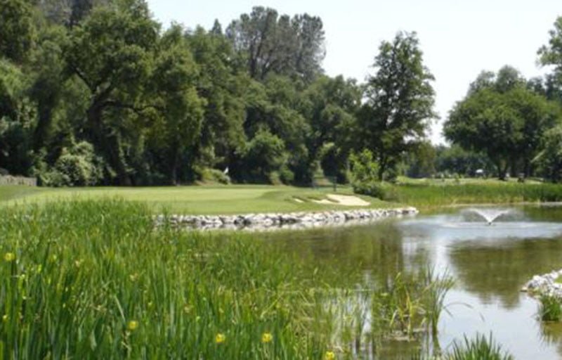 Riverview Golf & Country Club, Redding CA - #17 green