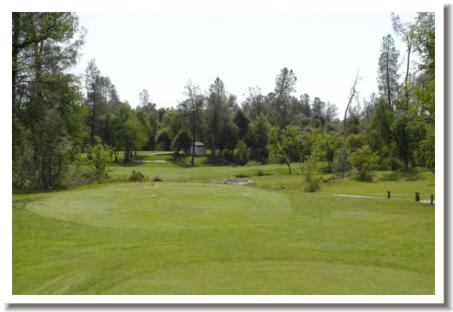 tierra-oaks-golf-club-12t