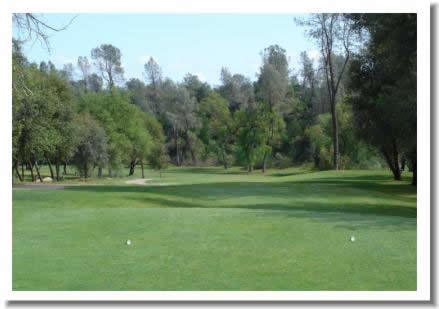 tierra-oaks-golf-club-13t