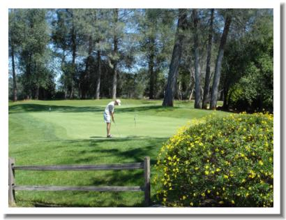 tierra-oaks-golf-club-practice-1