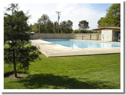Wilcox Oaks Golf Club - swimming pool